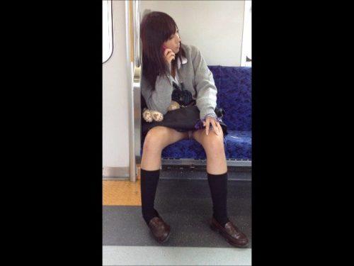 電車パンチラ 画像093