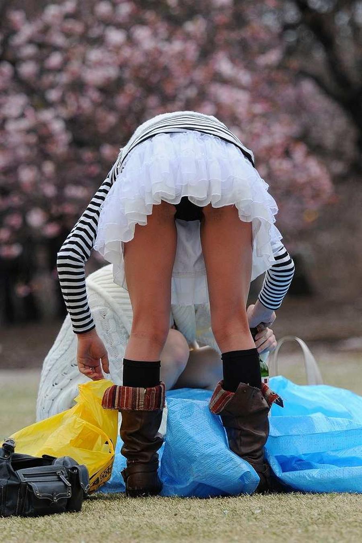 パ ン チ ラ 画像 110 枚! 素 人 さ んの 春 爛漫 판치라에 로사 이미지! [12 :