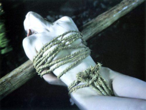 とよた真帆 画像076
